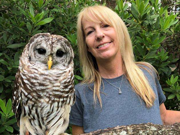 Sue Hills, Raptor Care Assistant