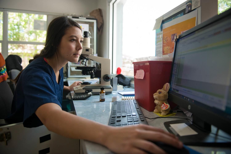 photo of intern at lab computer